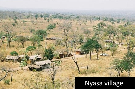 Nyasa_village_small.jpg