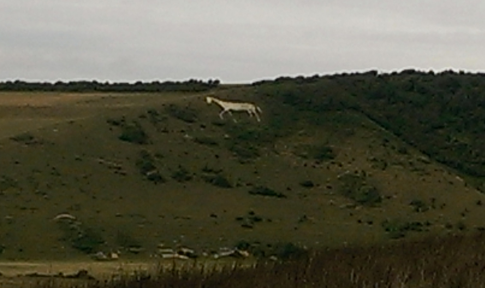White Horse of Litlington
