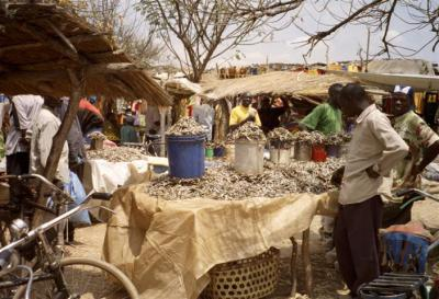 Fish stall in Nzega market