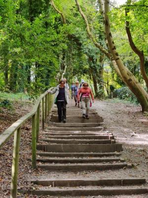 Downhill improves morale on the South Downs Way