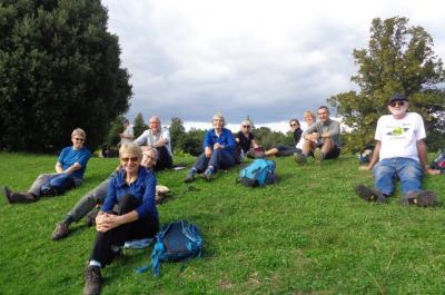Tea break at Denbies vineyard