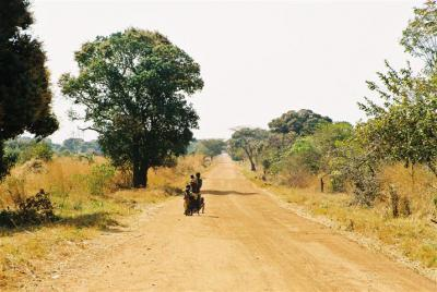 Road from Tabora to Urambo
